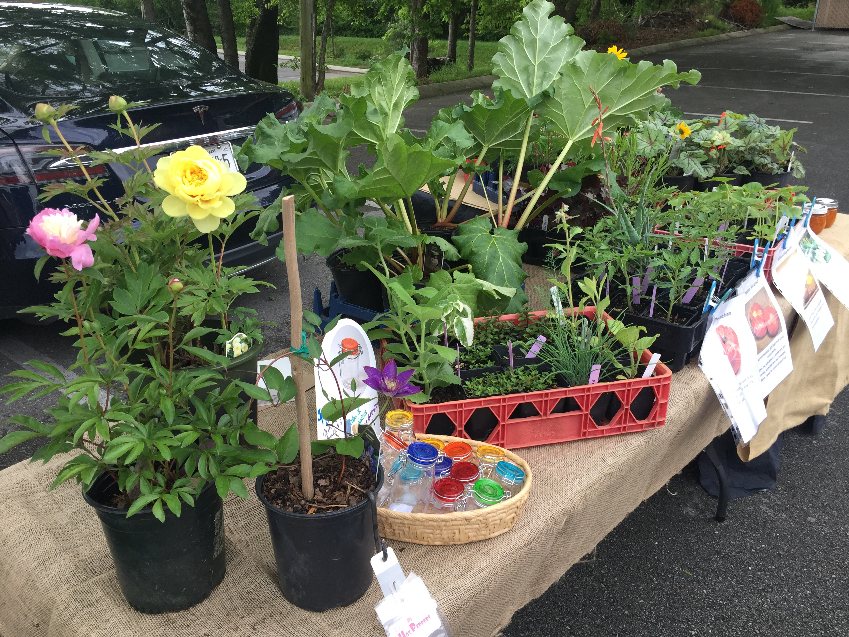 Our Farmers market booth